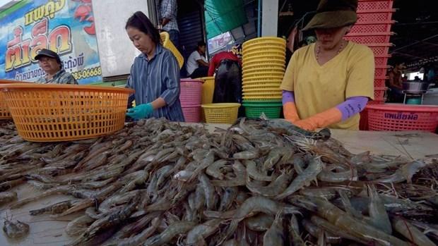 Exportaciones de camarones de Tailandia creceran 20 por ciento en 2020 hinh anh 1