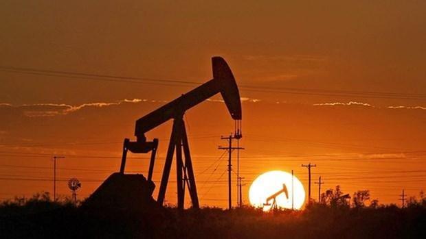 Vietnam ingresa fondo multimillonario por exportaciones petroleras en 11 meses hinh anh 1