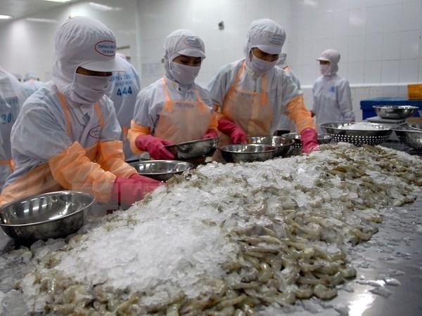 Destacan a Singapur como mayor importador de camaron vietnamita hinh anh 1