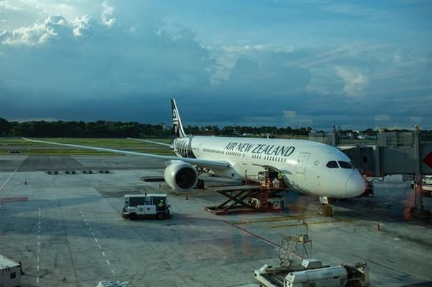 Aerolinea neozelandesa lanza ruta entre Vietnam y ciudad de Christchurch hinh anh 1
