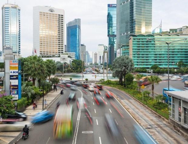 Estrechan Indonesia y EAU cooperacion multifacetica hinh anh 1