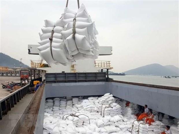Ingresa Vietnam 168 millones de dolares por exportaciones de arroz en noviembre hinh anh 1