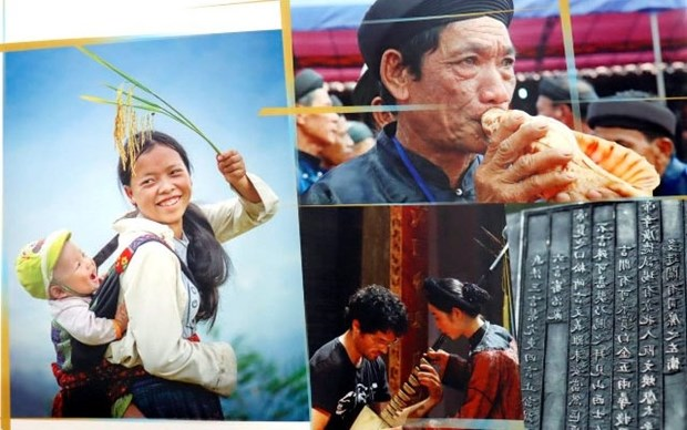 Promueven logros de Vietnam en materia de derechos humanos hinh anh 1