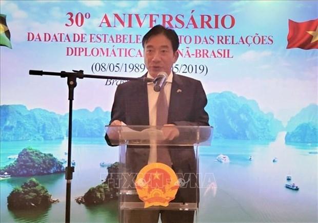 Embajador vietnamita destaca el buen desarrollo de nexos entre su pais y Brasil hinh anh 1