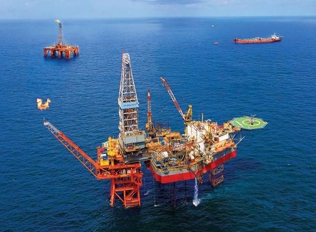 Empresa vietnamita cumple objetivo de explotacion de petroleo y gas hinh anh 1
