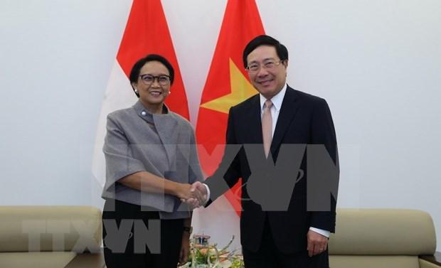 Ratifica Indonesia apoyo a Vietnam como presidente de ASEAN en 2020 hinh anh 1
