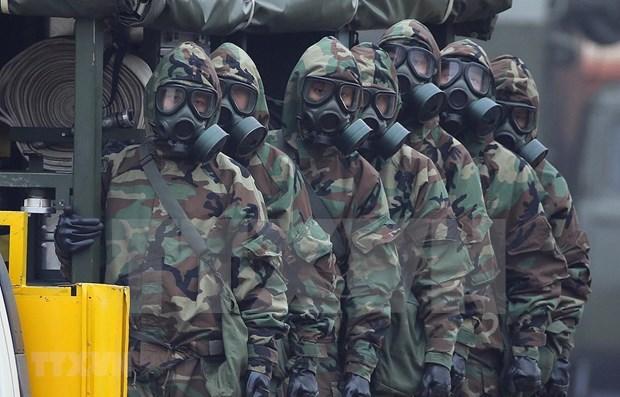 Realiza Vietnam simulacro en emergencia en centrales nucleares hinh anh 1