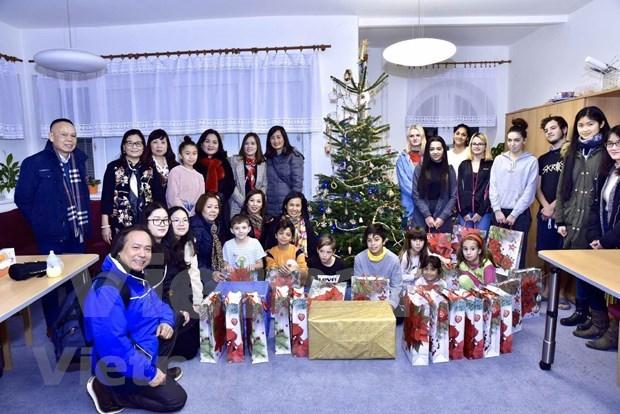 Organizan vietnamitas en la Republica Checa actividades de caridad hinh anh 1