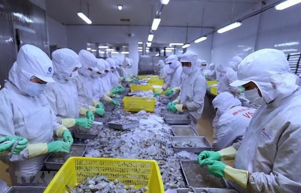 China entre mayores importadores de productos acuaticos de Vietnam hinh anh 1