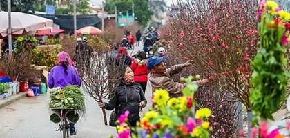 Abriran en Hanoi mercados de flores en ocasion del Ano Nuevo Lunar hinh anh 1