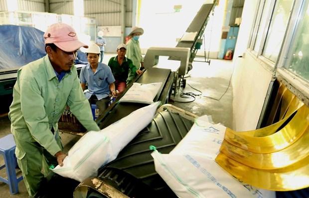 Ofrece Vietnam mas de 110,700 toneladas de arroz para respaldar a pobres en 2019 hinh anh 1