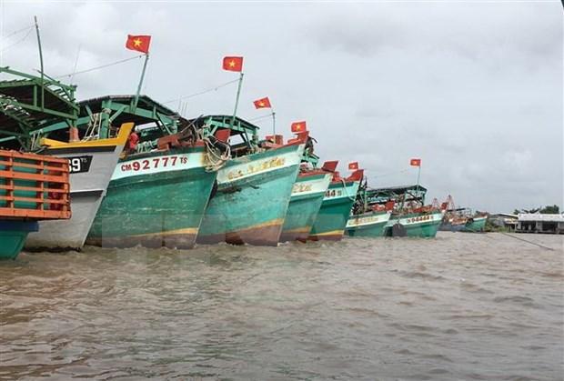 Avanza Vietnam en actividades contra la pesca ilegal hinh anh 1
