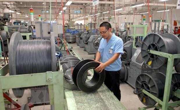 Recolecta Vietnam opiniones para perfeccionar politicas favorables al desarrollo de aldeas artesanales hinh anh 1