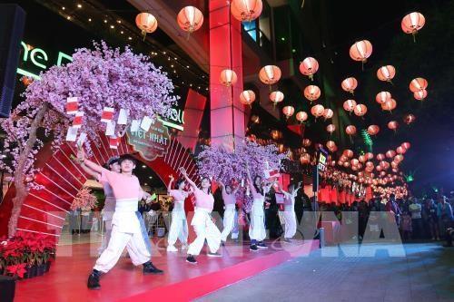 Celebran Festival Cultural Vietnam-Japon hinh anh 1
