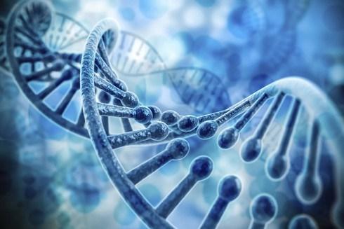 Logra Vietnam detectar mas de 20 mil mutaciones geneticas hinh anh 1