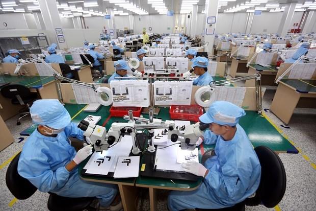 Crece economia de Vietnam 7,02 por ciento en 2019 hinh anh 1
