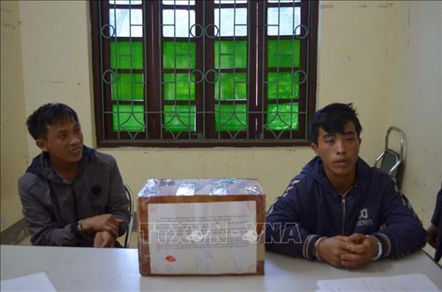 Detectan a narcotraficantes en area fronteriza en Vietnam hinh anh 1