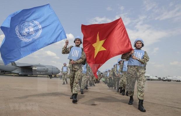 ONU espera mejor desempeno de Vietnam como miembro no permanente del Consejo de Seguridad hinh anh 1