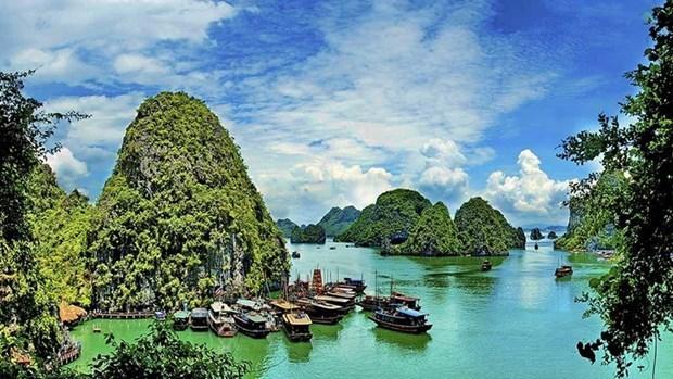 Registra Vietnam nuevo record en llegada de turistas extranjeros hinh anh 1