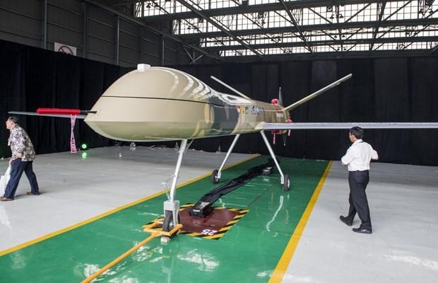 Introduce Indonesia aviones no tripulados para fines civiles y militares hinh anh 1