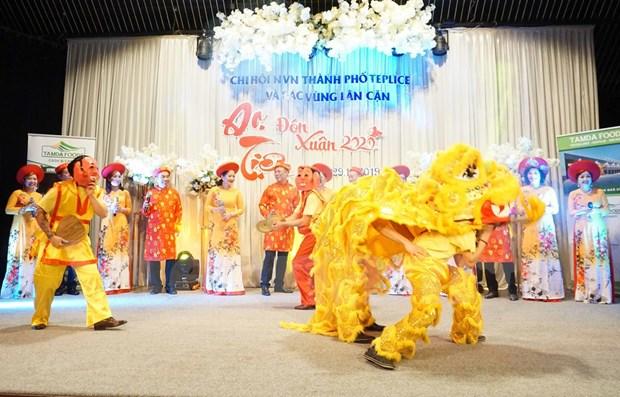 Ano Nuevo, ocasion para consolidar unidad de vietnamitas en Republica Checa hinh anh 1