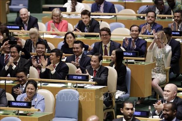 Asuncion de presidencia del Consejo de Seguridad de ONU: un desafio para Vietnam hinh anh 1