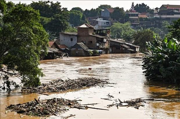 Al menos cuatro muertos por inundaciones en Indonesia hinh anh 1