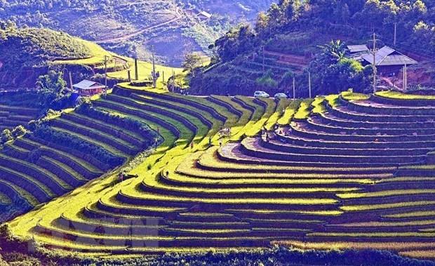 Reconoce Vietnam a otras siete zonas de reliquias nacionales especiales hinh anh 1