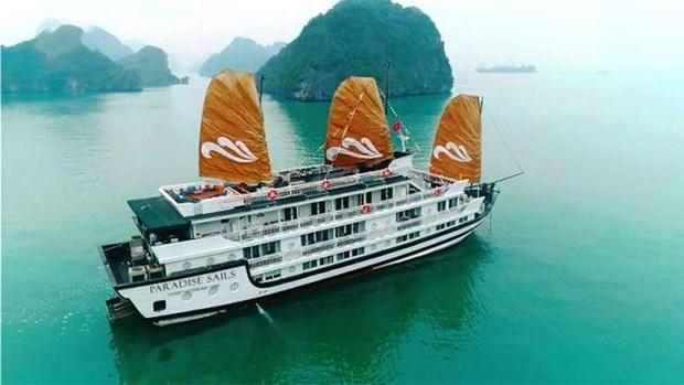 Lanzan crucero Paradise Sails en Bahia de Ha Long hinh anh 1