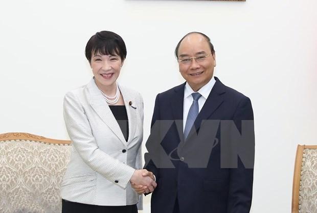 Vietnam propone intensificar apoyo de Japon en la construccion de gobierno electronico hinh anh 1