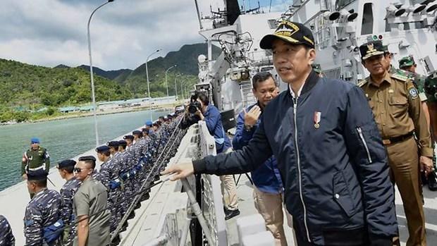 Llama Indonesia inversiones japonesas para proyectos en islas remotas hinh anh 1
