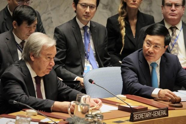 Vietnam por agilizar lazos con miembros del Consejo de Seguridad de la ONU hinh anh 1