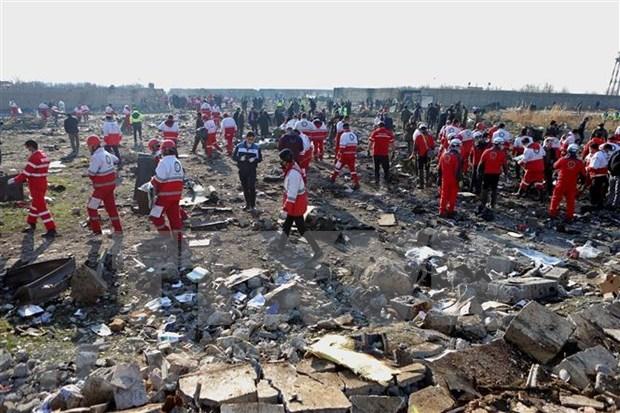 Expresa Vietnam condolencias por accidente de avion de Ucrania en Iran hinh anh 1
