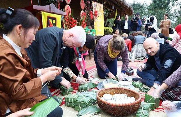 Explora cuerpo diplomatico extranjero la cultura vietnamita hinh anh 1