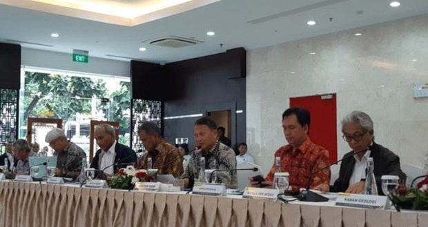 Eleva Indonesia meta de atraccion de inversiones en sector energetico hinh anh 1