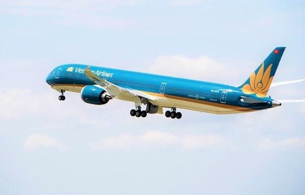 Aumentan aerolineas vietnamitas vuelos para satisfacer demanda del Tet hinh anh 1