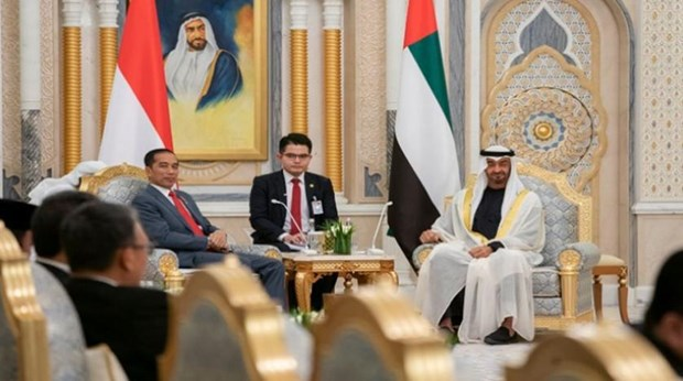 Firman Indonesia y Emiratos Arabes Unidos numerosos acuerdos cooperativos hinh anh 1