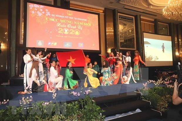 Celebran vietnamitas en ultramar numerosas actividades por Ano Nuevo Lunar 2020 hinh anh 1