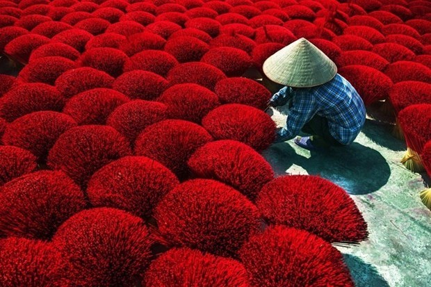 Ganan vietnamitas premios en concurso internacional de fotografia de India hinh anh 1