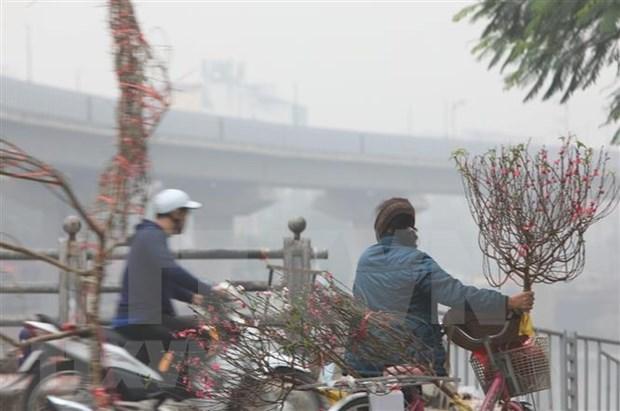 Debaten en Hanoi medidas para mejorar calidad de aire hinh anh 1