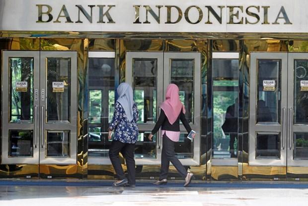 Emitira Indonesia milmillonarios bonos gubernamentales en divisas hinh anh 1