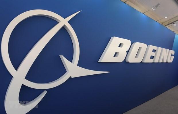Suspende Malasia adquisicion de aviones Boeing 737 MAX hinh anh 1