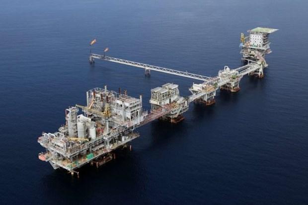 Exploraran en Indonesia 12 nuevos proyectos de petroleo y gas en 2020 hinh anh 1