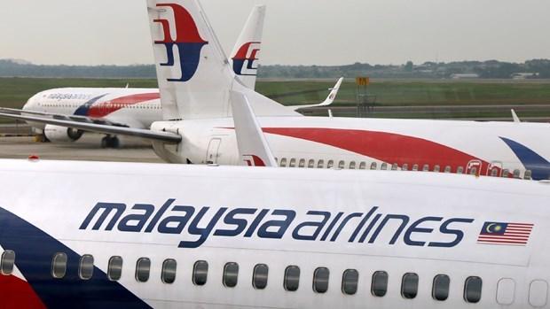 Proponen aerolineas francesa y japonesa comprar acciones de Malaysia Airlines hinh anh 1