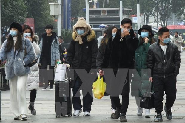 Cancilleria vietnamita aconseja a ciudadanos que no viajen a areas afectadas por coronavirus hinh anh 1