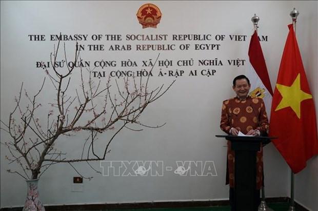 Comunidad vietnamita en Egipto se une al ambiente festivo del Tet hinh anh 1