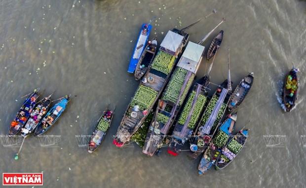 Exploran la vida en el rio Hau en ciudad vietnamita de Can Tho hinh anh 1