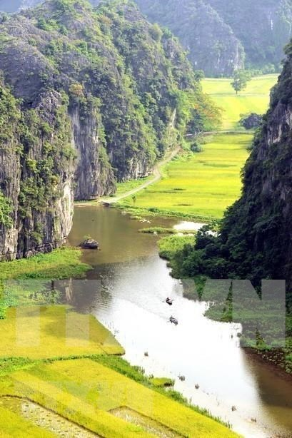 Complejo paisajistico de Trang An, patrimonio mundial que hechiza a los turistas hinh anh 1