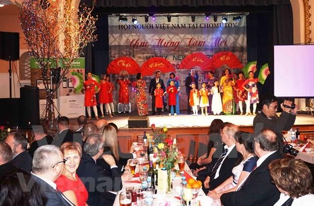 Vietnamitas en la Republica Checa celebran Ano Nuevo Lunar hinh anh 1