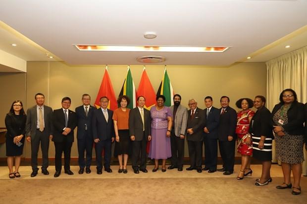 Considera Sudafrica a Vietnam como uno de sus principales socios sudesteasiaticos hinh anh 1
